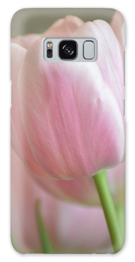 Pink Galaxy S8 Case featuring the photograph Pink Tulip Floral by P S