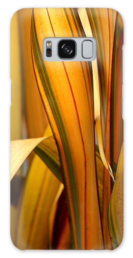 Blade Galaxy S8 Case featuring the photograph Plant In Yellow And Green by Art Block Collections