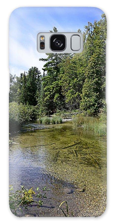 Platte River Mi Galaxy S8 Case featuring the photograph Platte River Beauty by Dave Zuker
