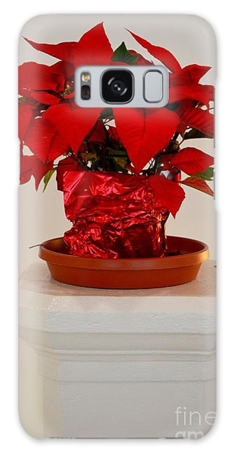 Poinsettia Galaxy S8 Case featuring the photograph Poinsettia On A Pedestal No 1 by Mary Deal