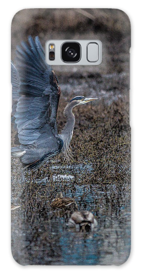 Blue Galaxy S8 Case featuring the photograph Poised For Flight by Charlie Duncan