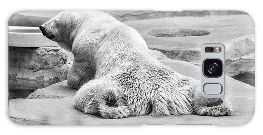 Animal Galaxy S8 Case featuring the photograph Polar Bear Bw by Chuck Kuhn
