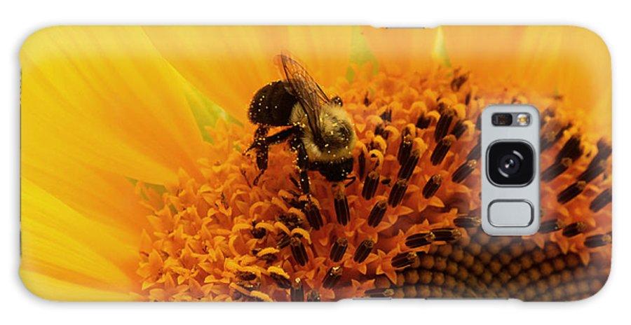Sunflower Galaxy S8 Case featuring the photograph Pollen Jock by Terri JS Molitor