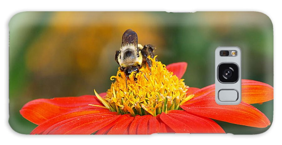 Nature Galaxy S8 Case featuring the photograph Pollinator by James Peterson