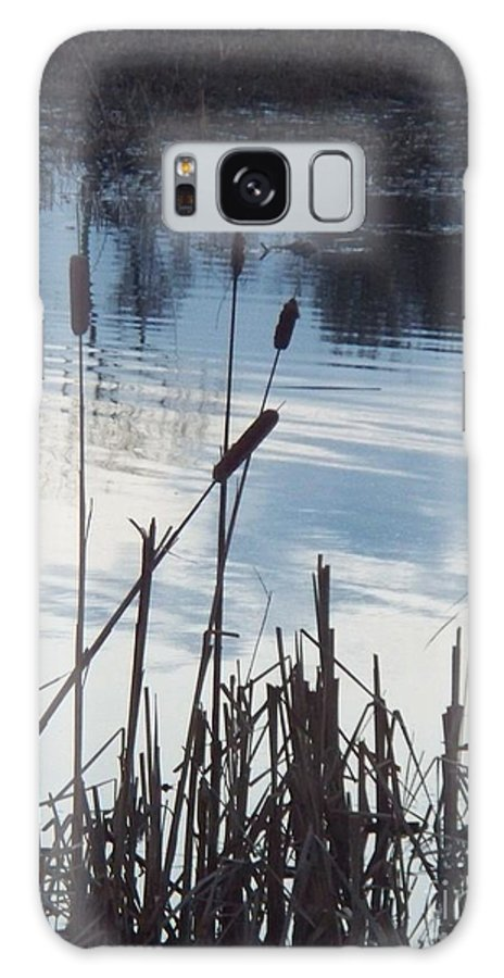 Landscape Galaxy S8 Case featuring the photograph Pond At Twilight by Eric Schiabor