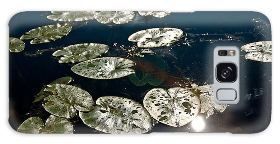 Lily Pads Galaxy S8 Case featuring the photograph Pond Sunset by Cheryl Baxter