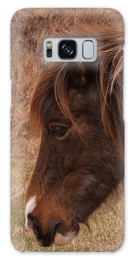 Accomack County Galaxy S8 Case featuring the photograph Pony Head by Scott Bush