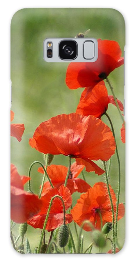 Poppies Galaxy S8 Case featuring the photograph Poppies 1 by Carol Lynch
