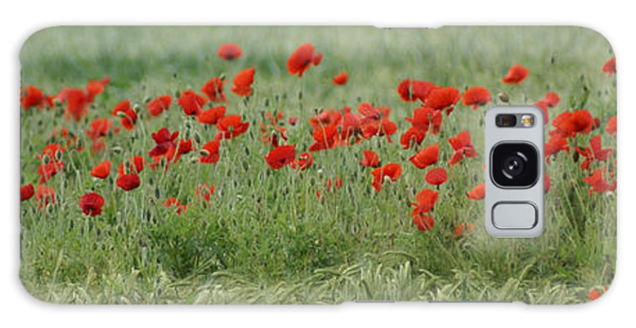 Poppies Galaxy S8 Case featuring the photograph Poppies by Carol Lynch