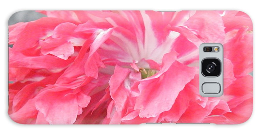 Poppy Galaxy S8 Case featuring the photograph Popping Pink by Brian Boyle