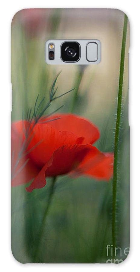 Flower Galaxy S8 Case featuring the photograph Poppy Abstract by Mike Reid