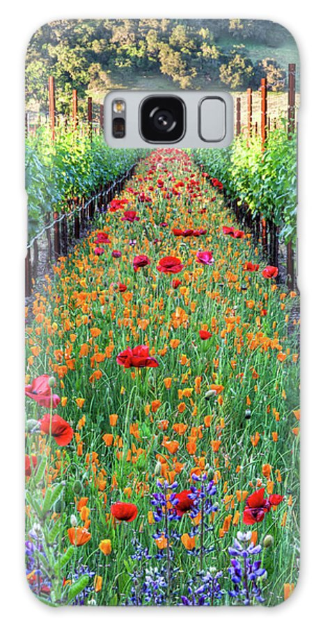 Tranquility Galaxy Case featuring the photograph Poppy Lined Vineyard by Rmb Images / Photography By Robert Bowman