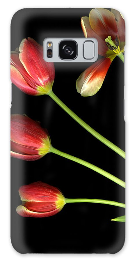 Scanography Galaxy Case featuring the photograph Pot Of Tulips by Christian Slanec