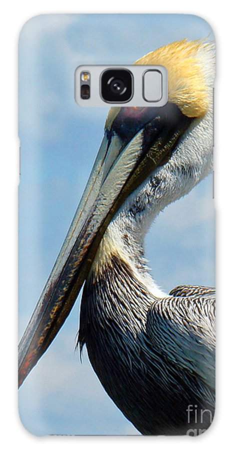Pelican Galaxy S8 Case featuring the photograph Pretty Blue Eyes by Nancy L Marshall