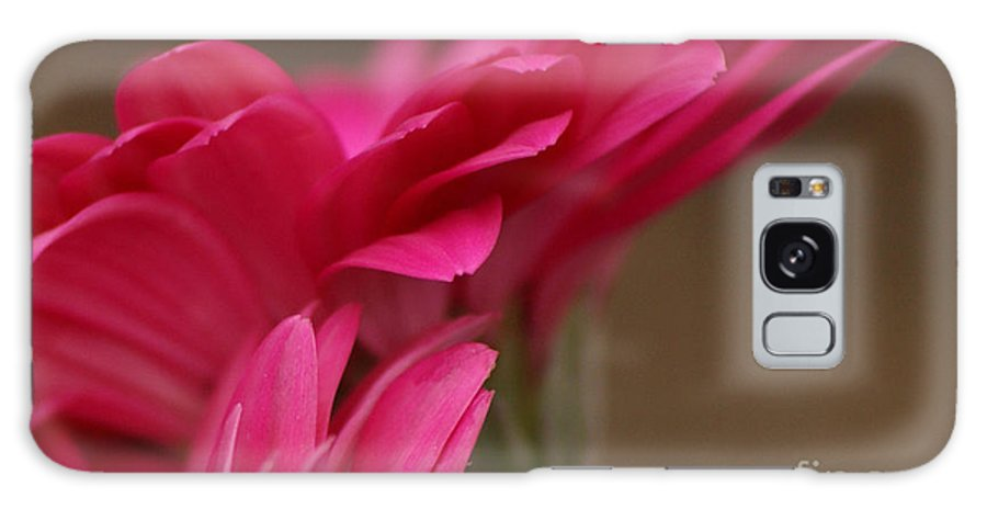 Pink Galaxy S8 Case featuring the photograph Pretty Petals by Carol Lynch