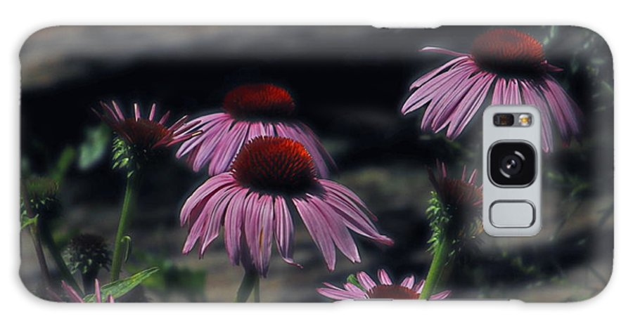 Flower Galaxy S8 Case featuring the photograph Pretty Purple Ladies by Lorna Hooper