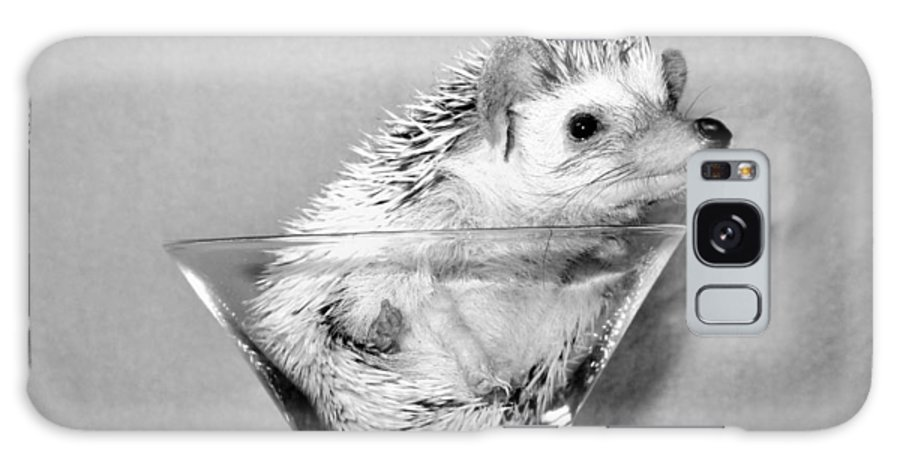 Hedgehog Galaxy S8 Case featuring the photograph Prickly Toasting by Art Dingo