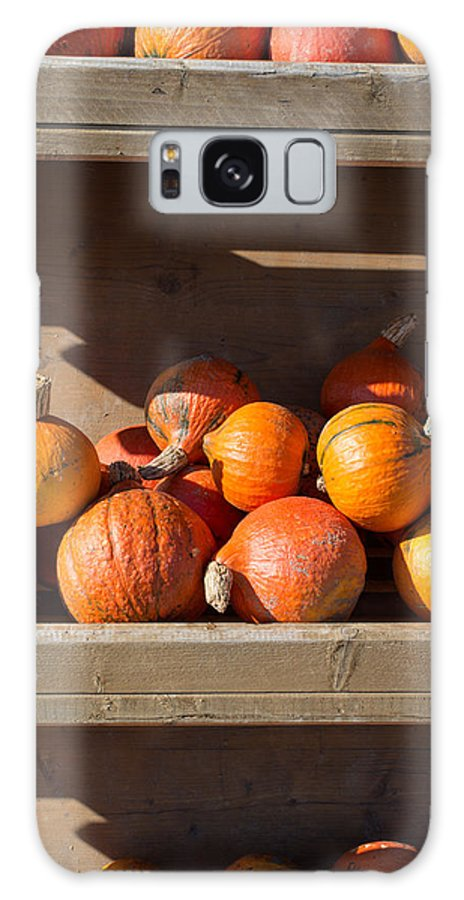 Pumpkin Galaxy S8 Case featuring the photograph Pumpkins For Sale by Frank Gaertner
