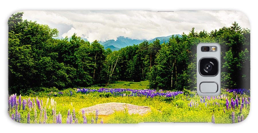 Crawford Notch Galaxy S8 Case featuring the photograph Purple And Mountains And Majesty by Greg Fortier