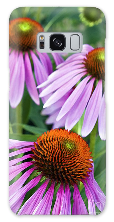 Painting Galaxy S8 Case featuring the photograph Purple Coneflowers - D007649a by Daniel Dempster