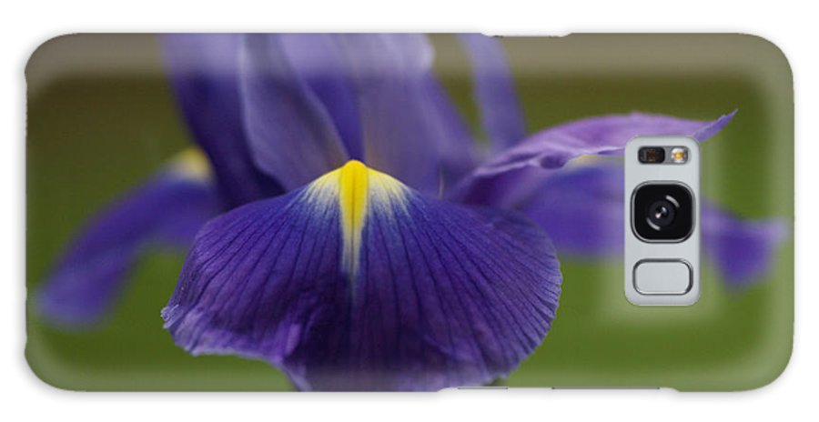 Purple Galaxy S8 Case featuring the photograph Purple Iris 6 by Carol Lynch