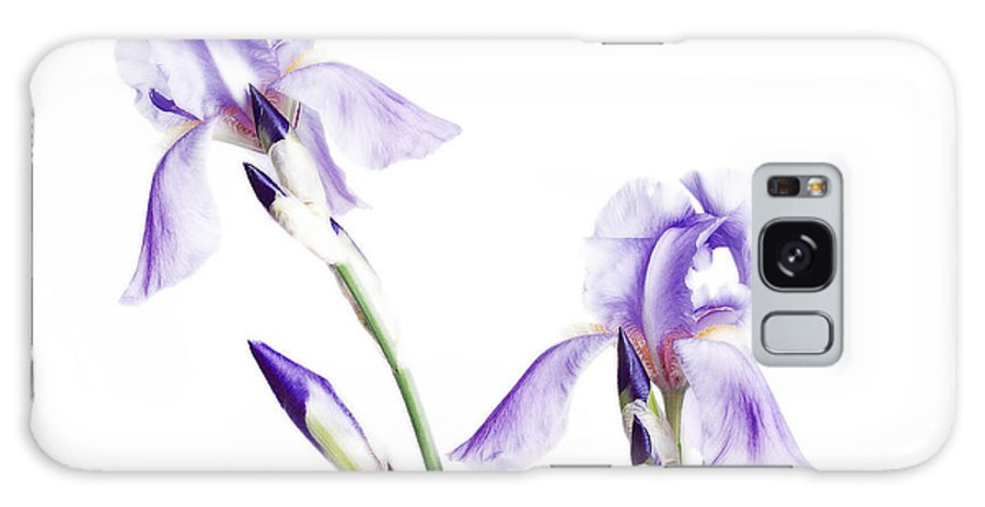 Andee Design Iris Galaxy S8 Case featuring the photograph Purple Iris Glow by Andee Design