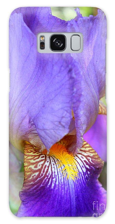 Purple Iris Galaxy S8 Case featuring the photograph Purple Iris Macro by Carol Groenen