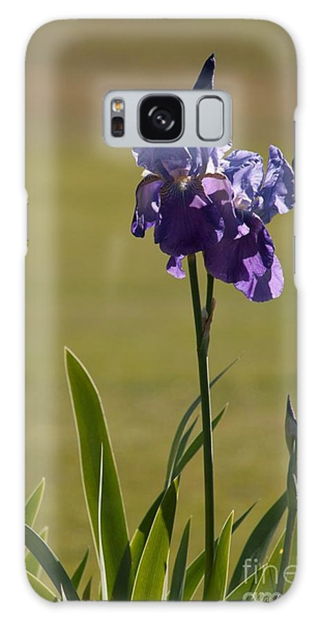 Purple Iris Galaxy S8 Case featuring the photograph Purple Iris by Nedra Bell
