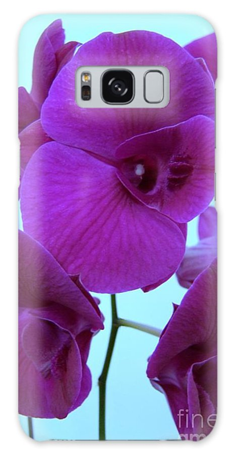 Orchid Galaxy S8 Case featuring the photograph Purple Orchids 3 by Mary Deal