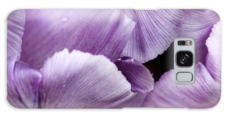 Tulip Galaxy S8 Case featuring the photograph Purple Tulip by Heather Allen