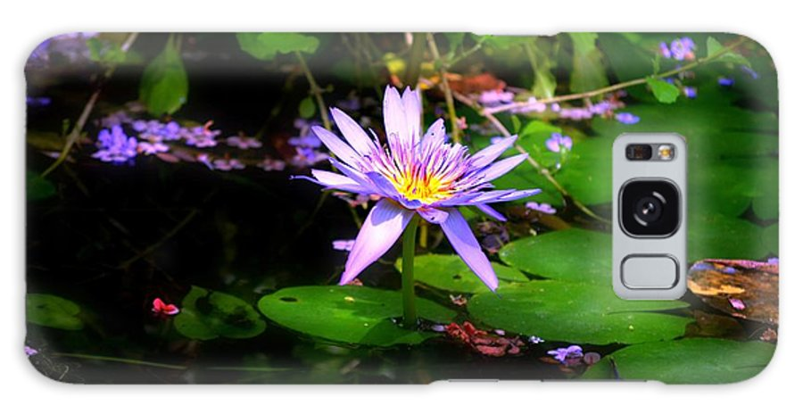 Purple Water Lilly Galaxy S8 Case featuring the photograph Purple Water Lilly by Peggy Franz