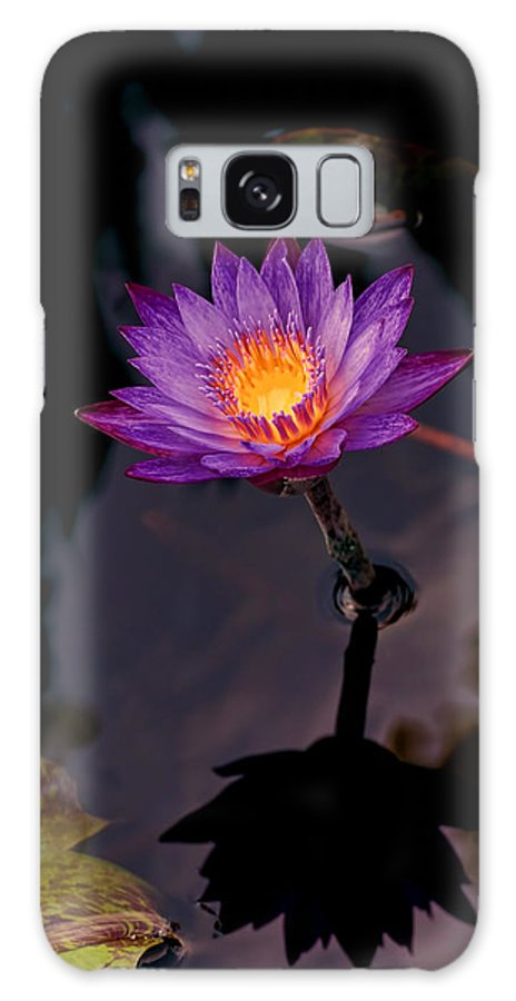 Purple Water Lily Garden Flower Reflection Nature Galaxy S8 Case featuring the photograph Purple Water Lily by Patton Imagery