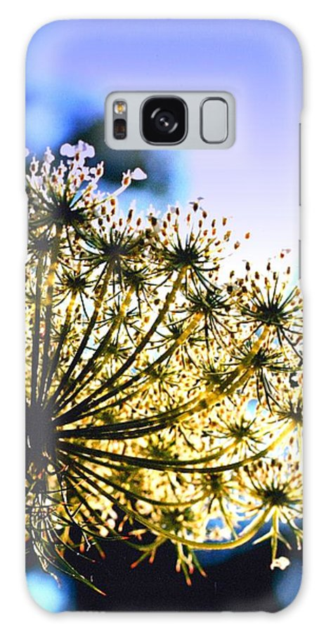 Queen Annes Galaxy S8 Case featuring the photograph Queen Anne's Lace II by Diane Merkle