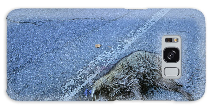 Animal Galaxy S8 Case featuring the photograph Raccoon Roadkill, Montgomery County, Md by Peter Essick