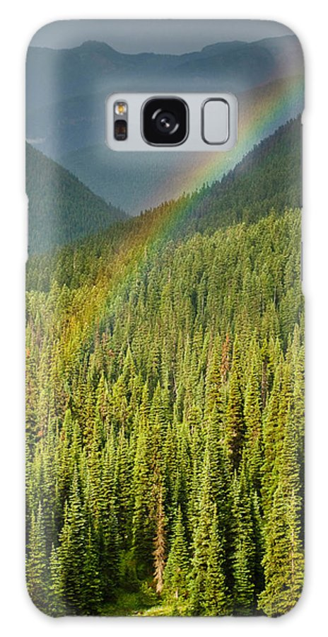 Color Image Galaxy S8 Case featuring the photograph Rainbow And Sunlit Trees by Jeff Goulden