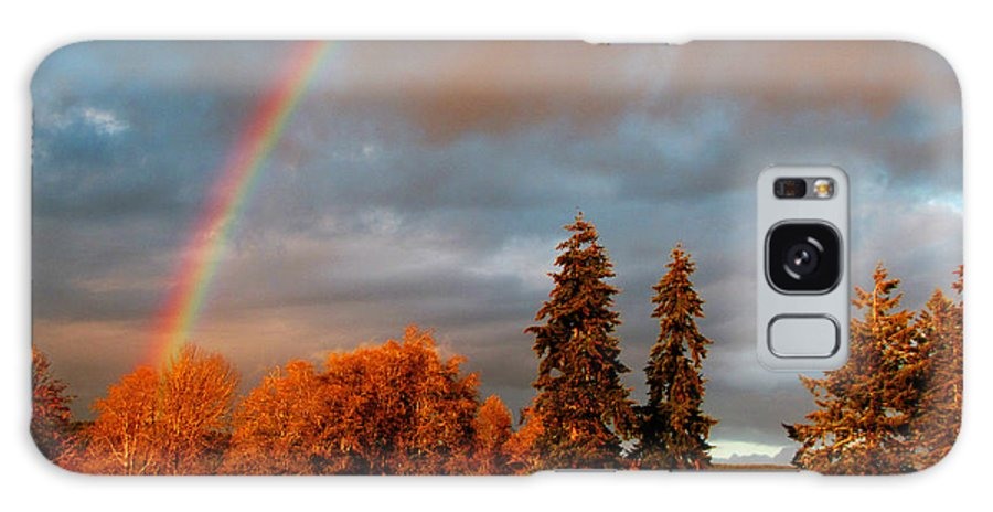 Nature Galaxy S8 Case featuring the photograph Rainbow's End At Rainbow Falls by Ron Tackett
