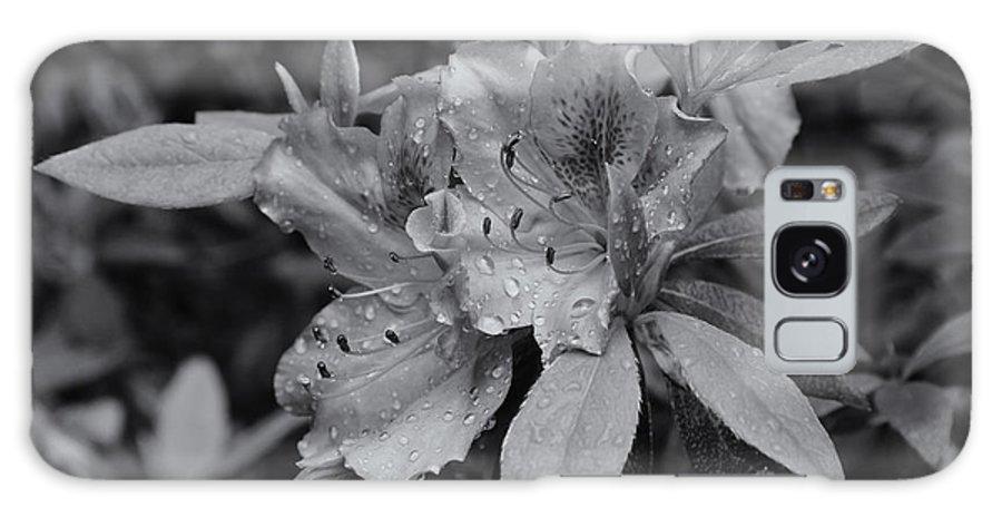 Galaxy S8 Case featuring the photograph Raindrops On Springtime Mono by Rachel Cohen