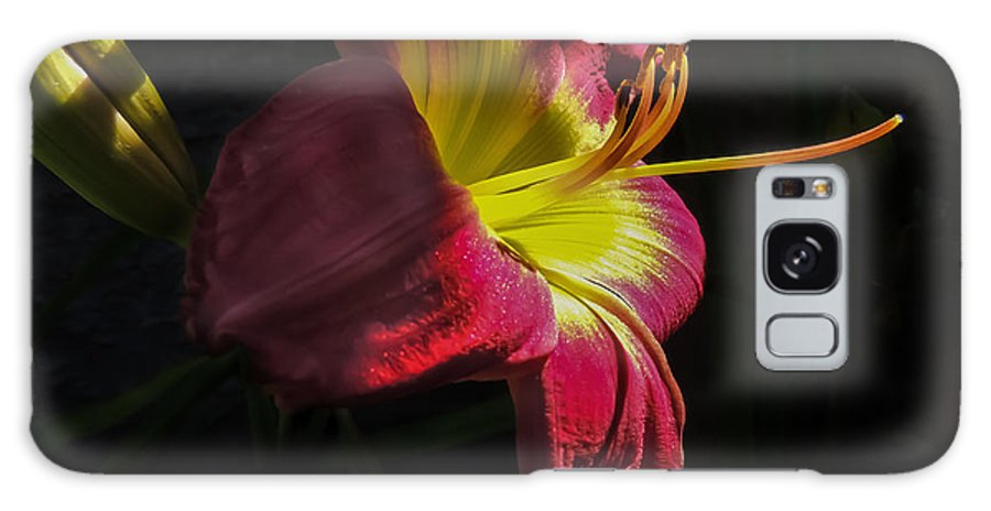 Nature Galaxy S8 Case featuring the photograph Red And Yellow Lily by Robert Mitchell