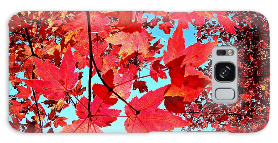 Autumn Galaxy S8 Case featuring the photograph Red Autumn by Tisha Clinkenbeard