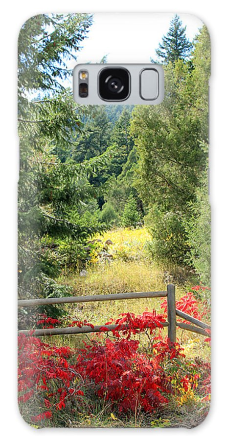 Fall Galaxy S8 Case featuring the photograph Red Bushes by Lorraine Baum