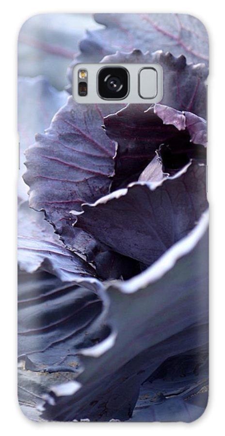 Red Cabbage Abstract Galaxy S8 Case featuring the photograph Red Cabbage Abstract by Maria Urso