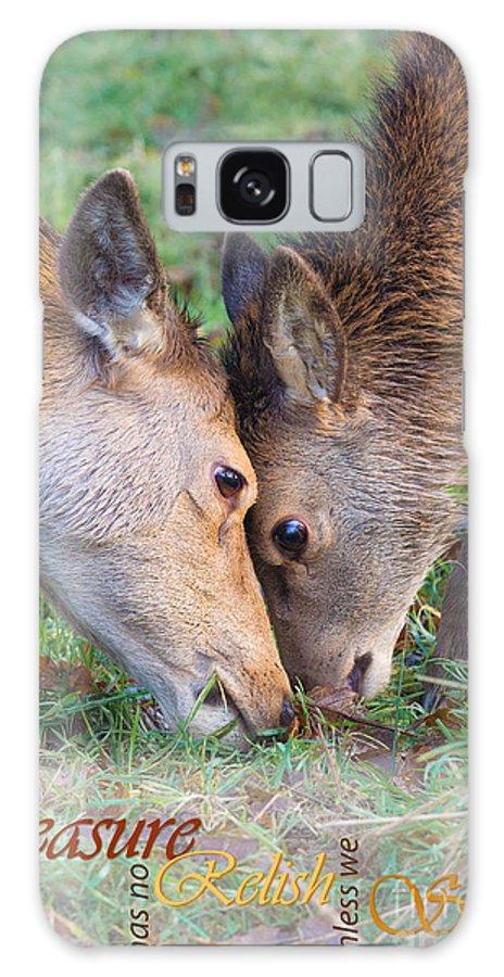 Red Deer Galaxy S8 Case featuring the photograph Red Deer Cervus Elaphus Head To Head by Liz Leyden