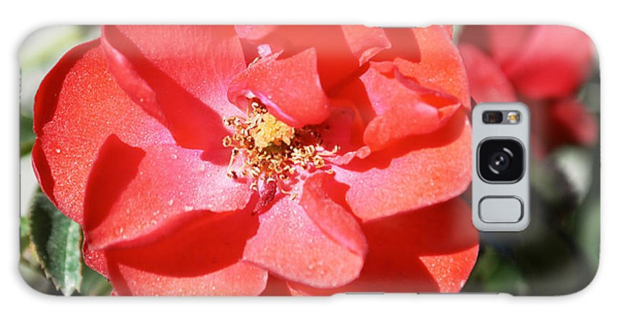 Barbara Snyder Galaxy S8 Case featuring the digital art Red Flower I by Barbara Snyder