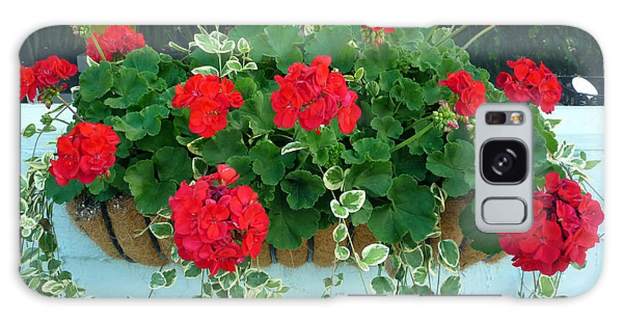 Red Geranium Galaxy S8 Case featuring the photograph Red Geranium 1 by To-Tam Gerwe