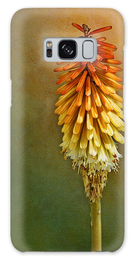Red Hot Poker Galaxy S8 Case featuring the photograph Red Hot Poker by Nikolyn McDonald