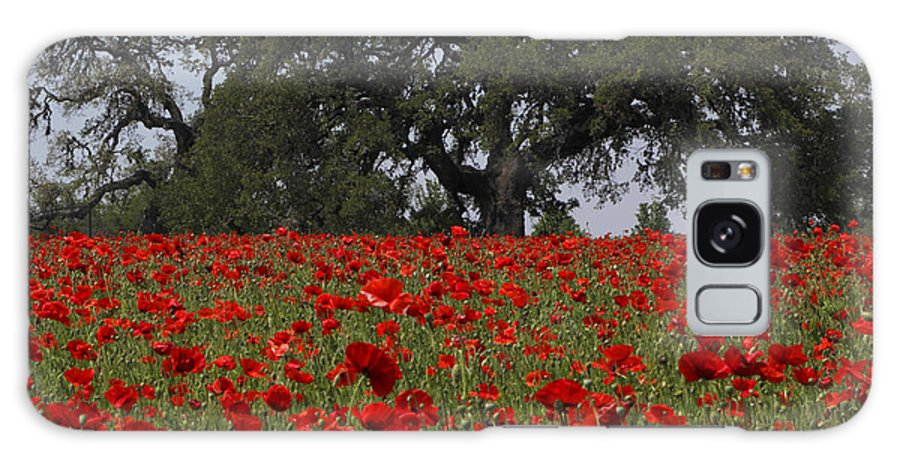 Texas Galaxy S8 Case featuring the photograph Red Poppy Field by Susan Rovira