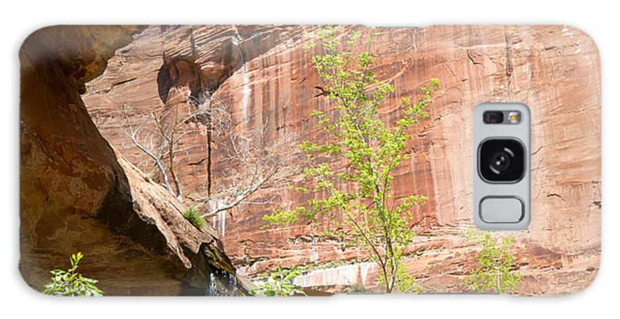 Zion National Park Galaxy S8 Case featuring the photograph Red Rock With Waterfall by Natalie Rotman Cote