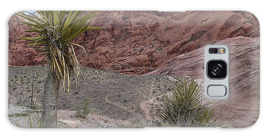 Cactus Galaxy S8 Case featuring the photograph Red Rocks by Steve Ondrus