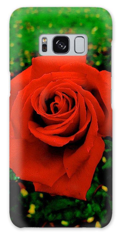 Rose Galaxy S8 Case featuring the photograph Red Rose On Green by Dwight Pinkley