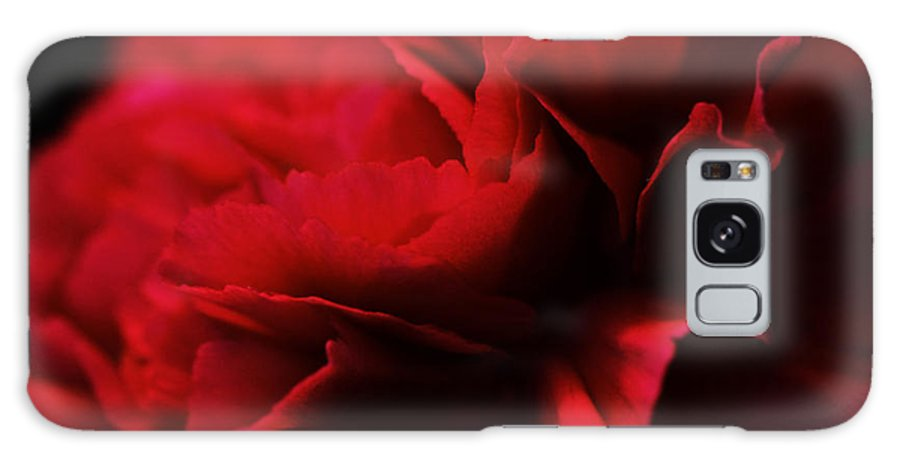 Flower Galaxy S8 Case featuring the photograph Red Velvet by Pamela Gail Torres
